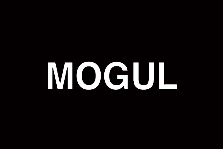 Mogul Influencer
