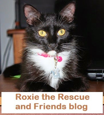 Roxie the Rescue and Friends