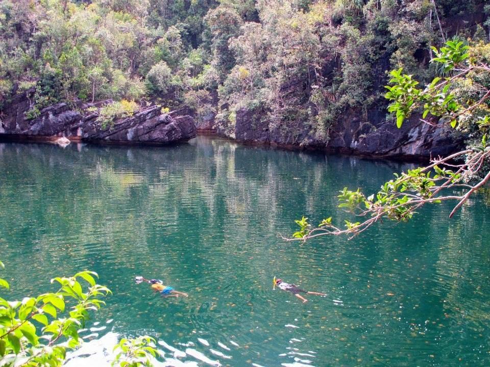 danau ubur ubur di raja ampat papua