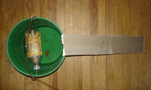 Fatto in casa trappola per topi semplice ed efficace che - Come uccidere i topi in casa ...