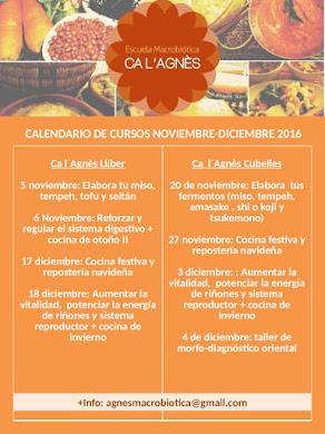 CALENDARIO CURSOS NOVIEMBRE-DICIEMBRE 2016