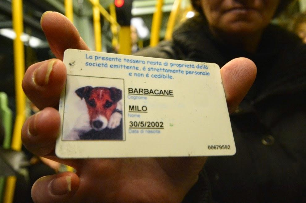 #Atac, un servizio da cani e questa ne è la riprova - aurelianoverita