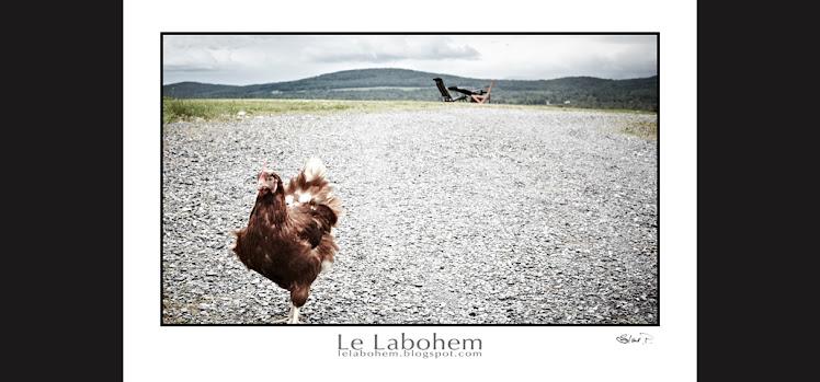 009 SP ma poule