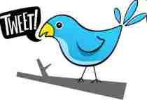 El pájaro de Twitter se llama Larry