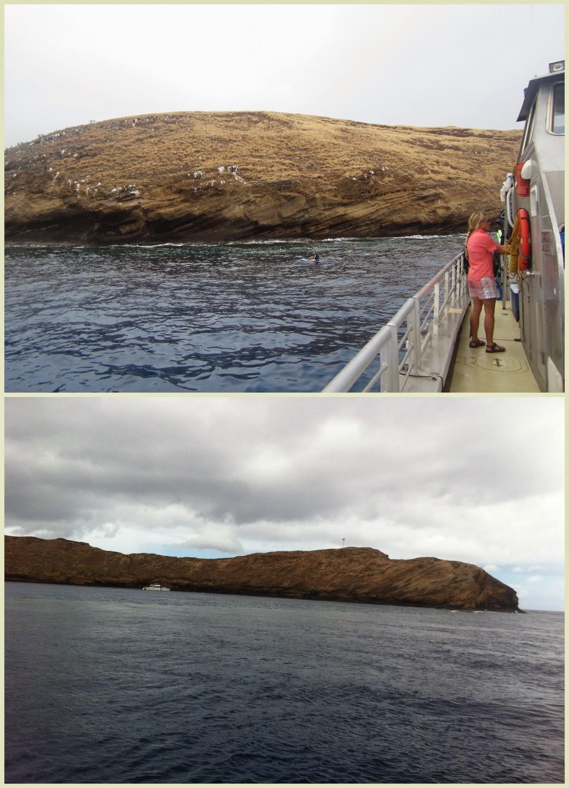 """Snorkel en Molokini crater Maui"""