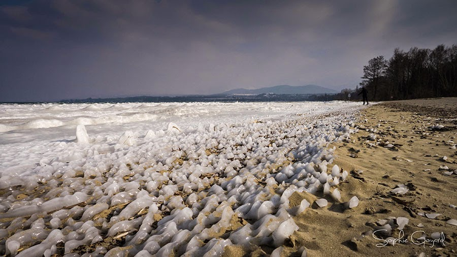 Lac léman gelé photographie
