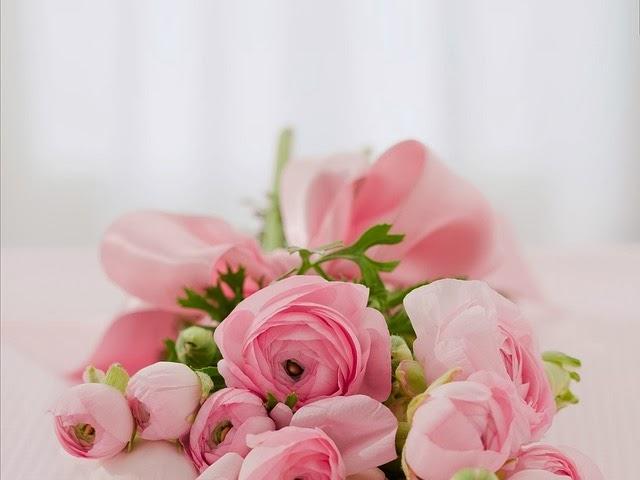 http://pixabay.com/en/roses-bouquet-congratulations-142876/