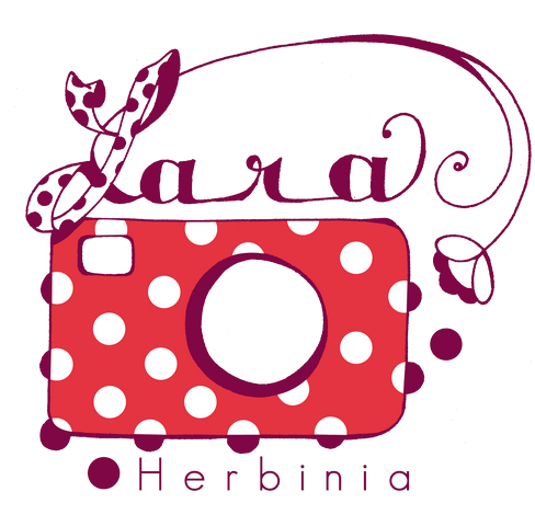Le Blog photos de Lara Herbinia