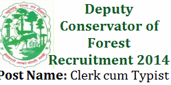 Clerk cum Typist Jobs - Forest Department 2014