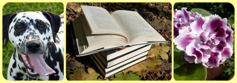 Knihy a mé další radosti