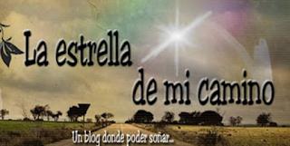 http://laestrellademicamino.blogspot.com.es/2015/05/paris-amor-y-otros-desastres-marta.html