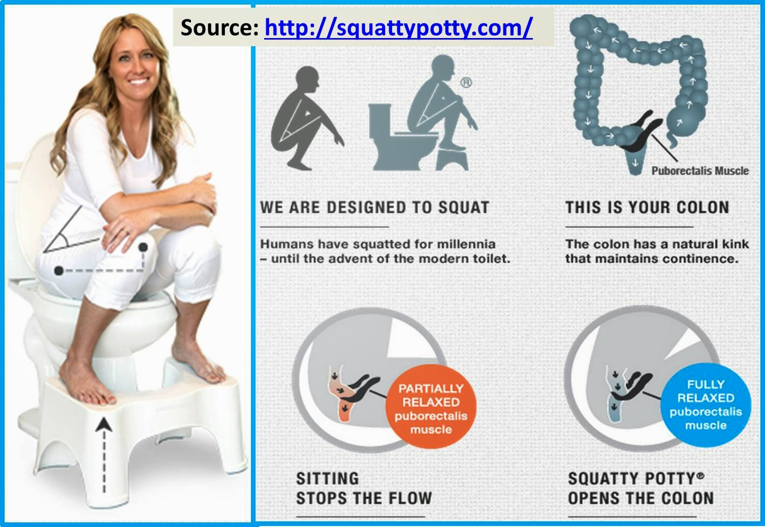 The Virtual Philosophy Club Squat Toilet Squatty Potty On Shark