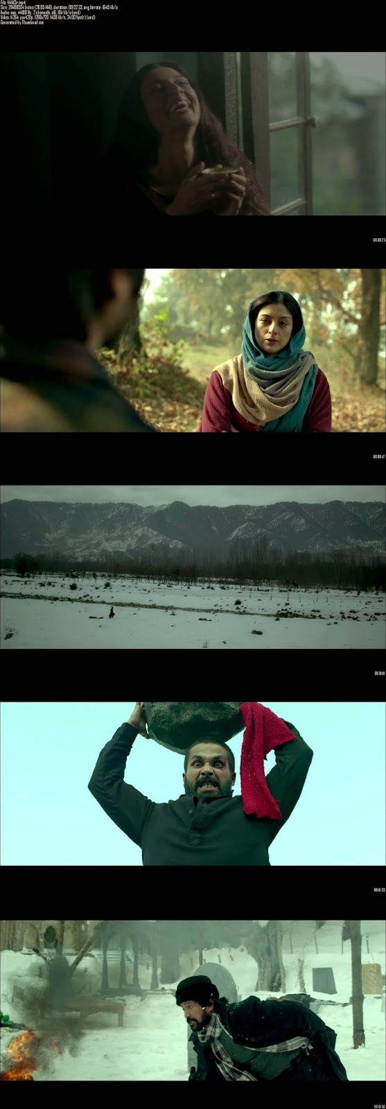 Mediafire Resumable Download Link For Teaser Promo Of Haider (2014)