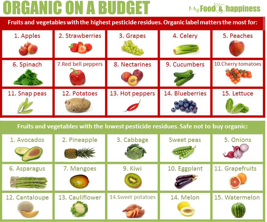 Vegetables List Healthy, Fit, and Focu...