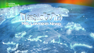 Nordic Wild (2012) Documentario Streaming