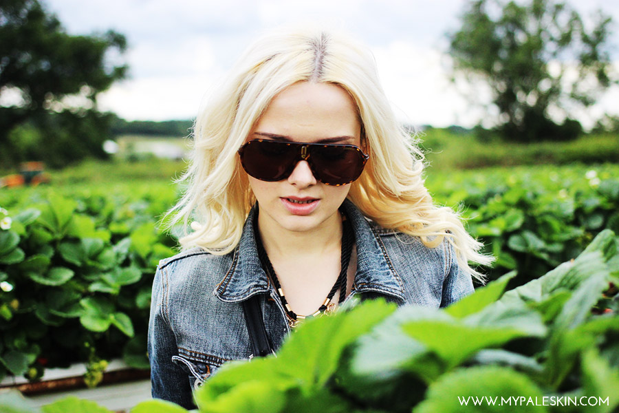 Farm, Pick your own, Strawberries, My Pale Skin Blog, Parkside Farm