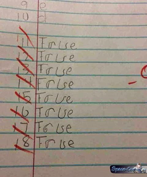 funny true false test