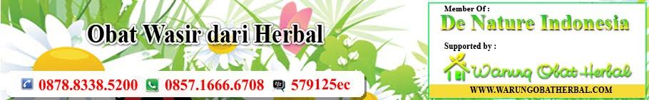 Obat Wasir dari Herbal