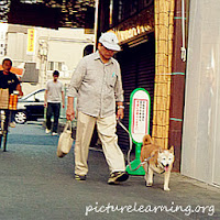 Kawasaki Leisure Walking dog