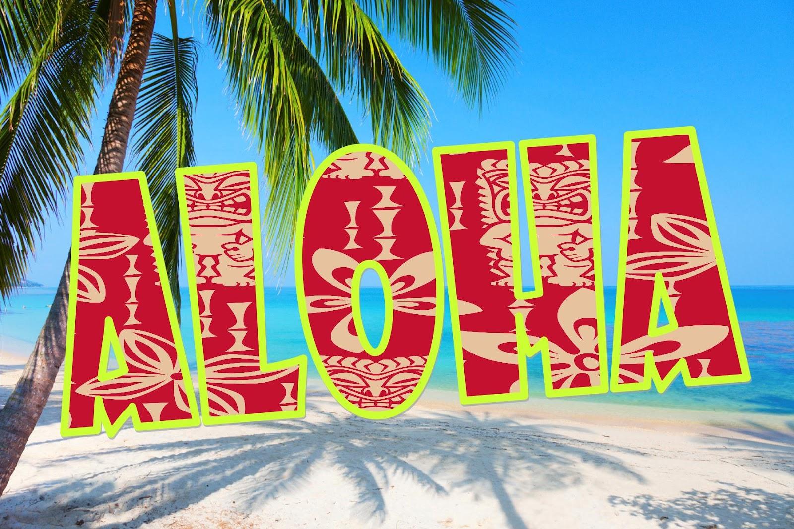 Aloha+Sunday odcmv e news archive