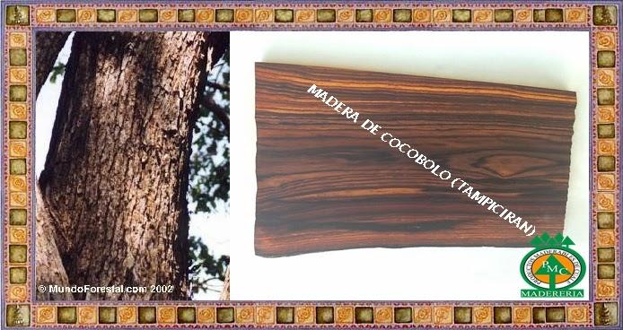 tampiciran-cocobolo-maderas-exoticas-duras-venta-maderas-cuale-vallarta-mexico