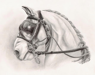 horse drawings, equine art, realistic artworks