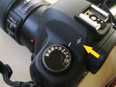 Focal Plane Mark on the Camera Body
