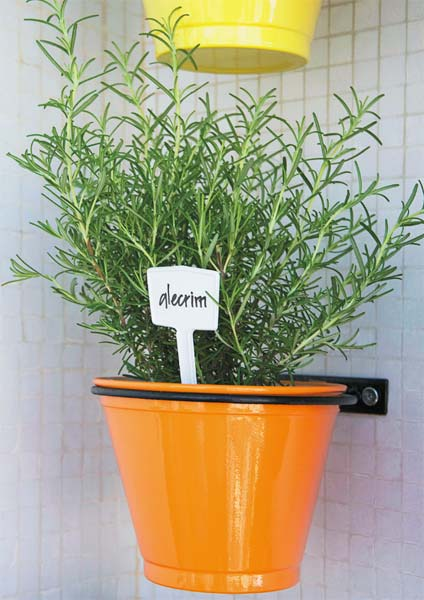 horta jardim na varanda:Dicas de como cultivar temperos e ervas em espaços pequenos.