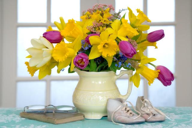 Hình nền đẹp các loài hoa khoe sắc