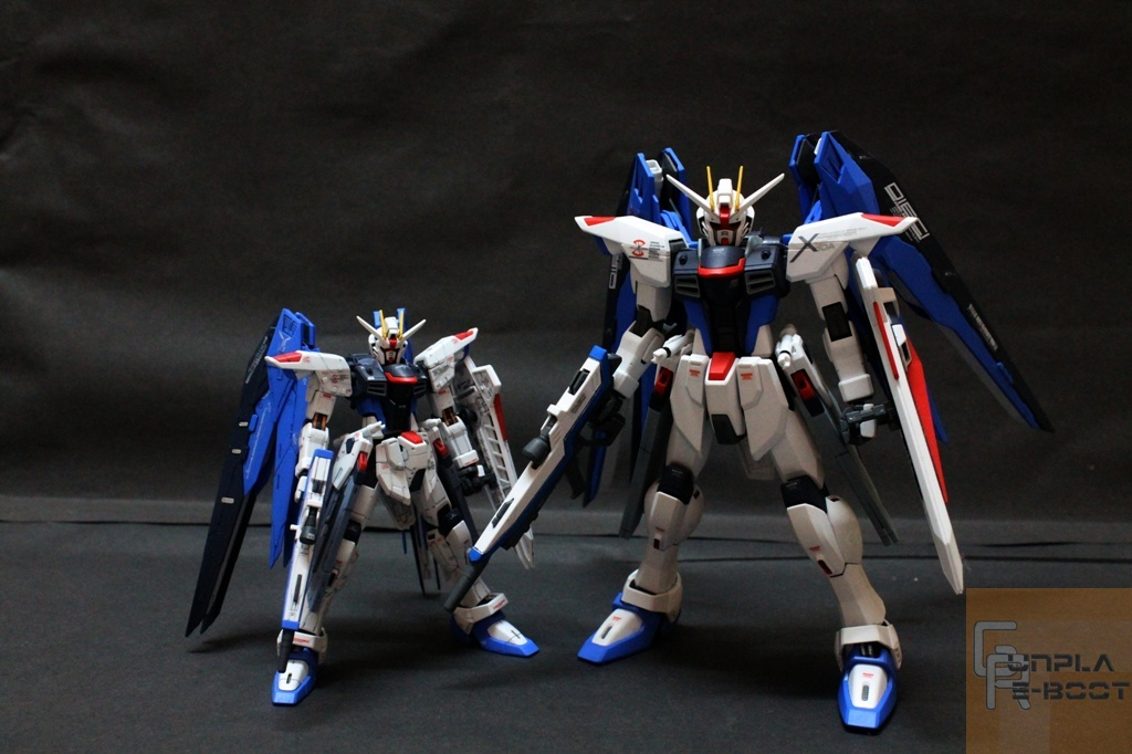 RG 1/144 Freedom VS MG 1/100 Freedom Extra Finish : Gunpla