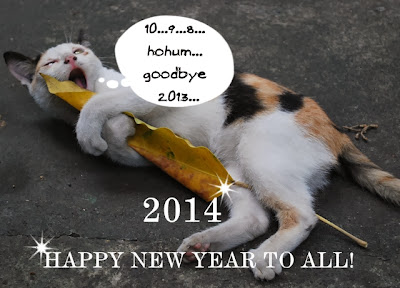 cat, happy new year, greetings