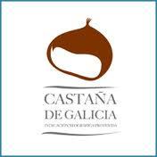 Todo lo que siempre quisiste saber sobre la Castaña de Galicia