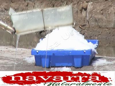 El uso correcto de este tipo de sal, es,  añadiendo la misma a los productos, pero sin llegar a cocinarlos.  Por ejemplo, para el pescado, para las carnes, ensaladas, etc. pero siempre en el momento que se vaya a consumir, no es recomendable cocinarla.  Se puede mezclar con  otras sustancias, especias, etc. Otra variedad de hibridación es, combinarla con rosas.  De esta manera se  cambia el color de la sal, pero no se modifica su sabor este es un buen ejemplo de hibridación.  La producción de la flor de la sal, es un buen ejemplo de producción sostenible, que ayuda a sus productores, a crear riqueza dentro del medio rural, sin grandes inversiones y respetando en todo momento el medio natural.  El uso correcto de este tipo de sal, es  añadiendo la misma a los productos, pero sin llegar a cocinarlos. Por ejemplo, para el pescado, para las carnes, ensaladas, etc. pero siempre en el momento que se vaya a consumir.     Lo último y lo más innovador que se ha comercializado es, la Flor de Sal Líquida  2  - 10  del video  en spray  y echarlo a los alimentos.  Otra gran ventaja de La Flor de la Sal Líquida, es que no retiene líquidos, ya que tiene  solo del  8 al 10 % de sodio.  La flor de Sal sólida,  tiene 28 al 32 % de Sodio  Otro uso frecuente de la Flor, es darse baños o pediluvios.  Para ello,  la proporción de sal por litro de agua,  que emplearemos será de 36 gramos, que es la misma proporción que la del agua del mar.  Es preferible utilizar agua caliente, siendo un buen sistema de expulsión de toxinas.   Cada molécula de  Sodio,  retiene dos moléculas de  agua. Por esta razón el abuso de la sal produce una retención de líquidos en alas personas.