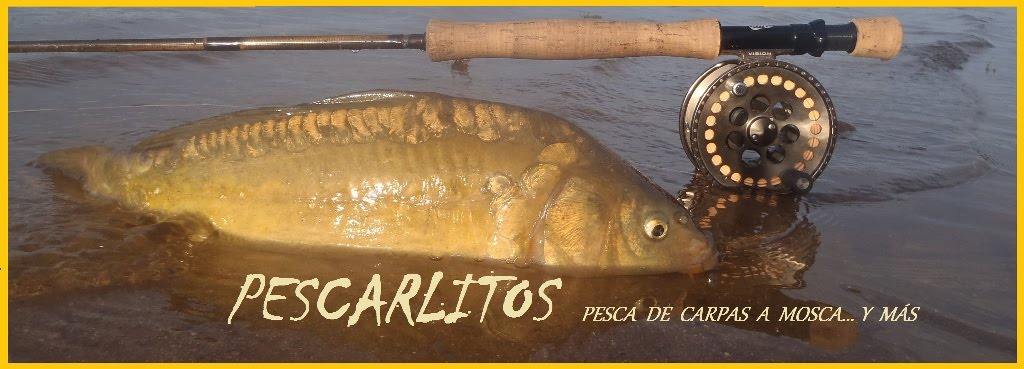 PESCARLITOS