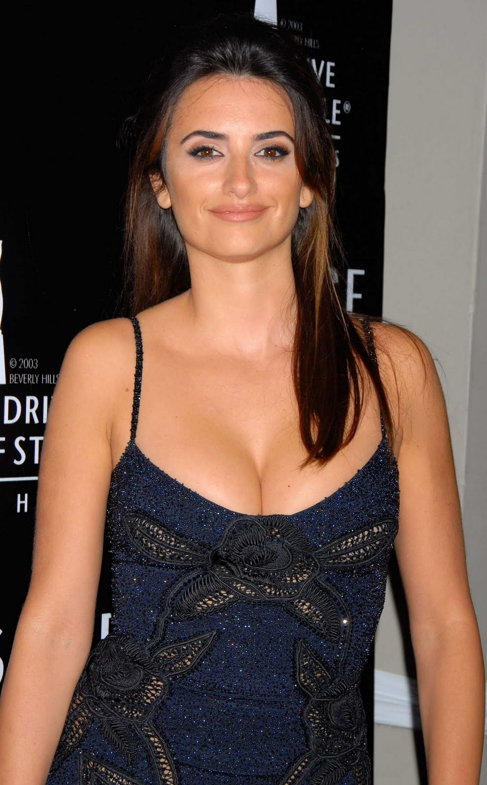 Penelope Cruz Hair, Long Hairstyle 2013, Hairstyle 2013, New Long Hairstyle 2013, Celebrity Long Romance Hairstyles 2304