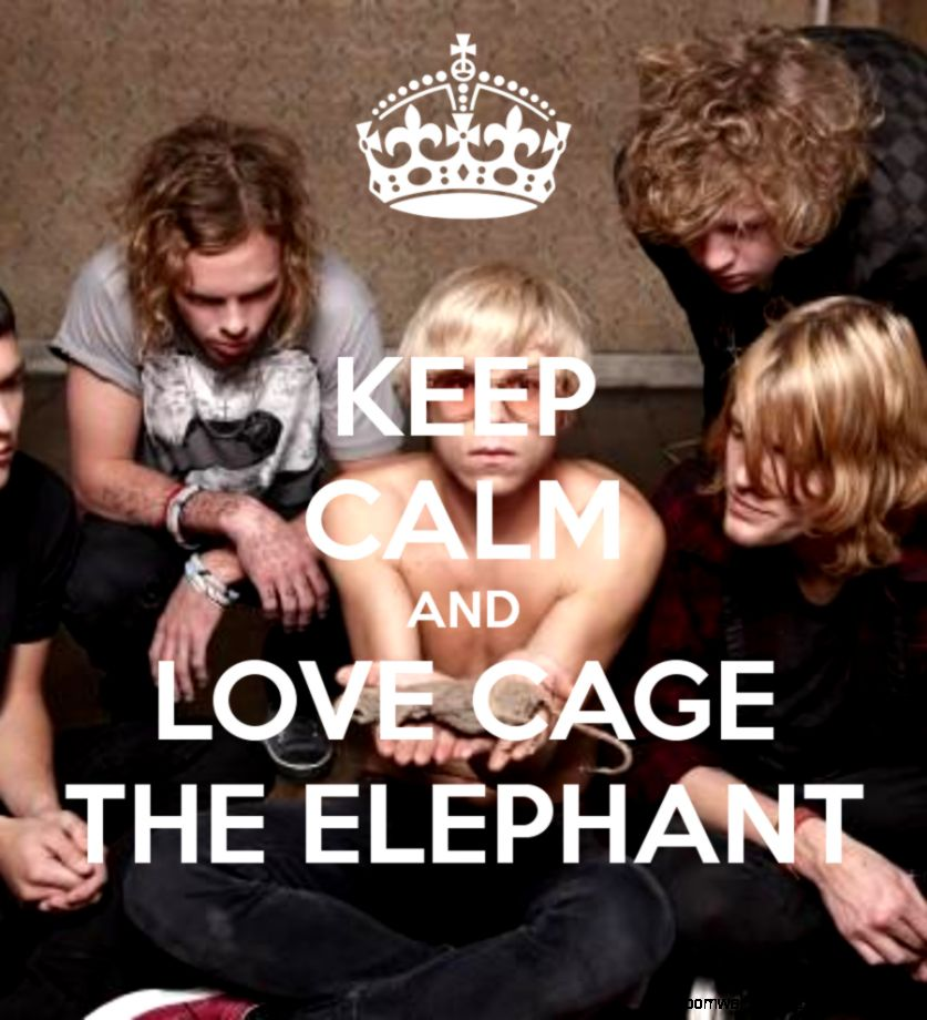 KEEP CALM AND LOVE CAGE THE ELEPHANT   KEEP CALM AND CARRY ON