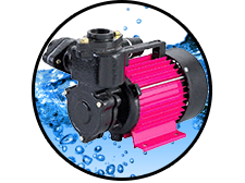 CRI Self Priming Monoblock Pump SHINE-100 (PSM-7) 1PH (1HP) Online Dealers in Chennai, India - Pumpkart.com