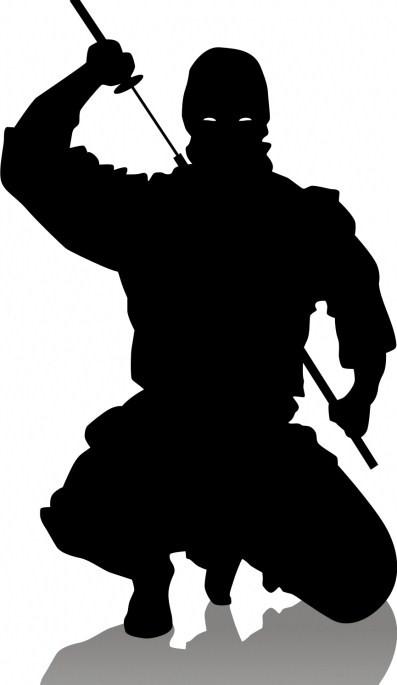 [Image: ninja_crouch.jpg]