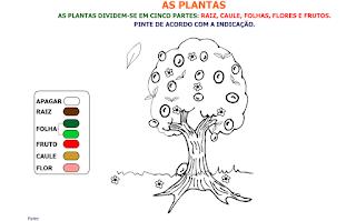 http://websmed.portoalegre.rs.gov.br/escolas/obino/cruzadas1/atividades_plantas/572_asplantas.swf