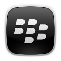 Blackberry Pin (24/7)