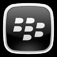 Blackberry Pin (24/7)