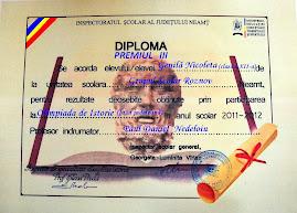 Premianţi la Istorie, Grupul Şcolar Roznov, anul şcolar 2011-2012..