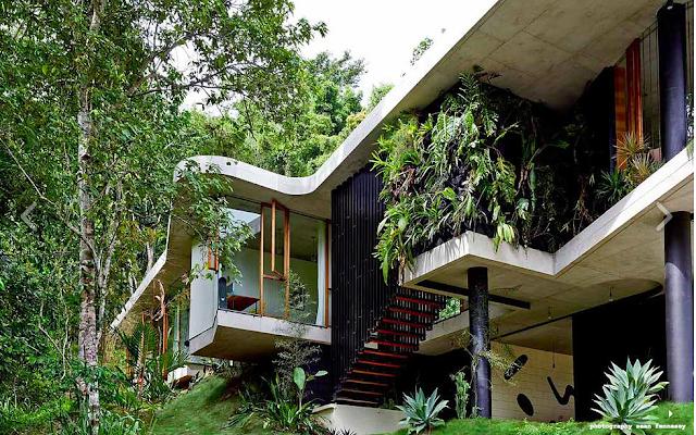 The Planchonella House by Jesse Bennett Architect