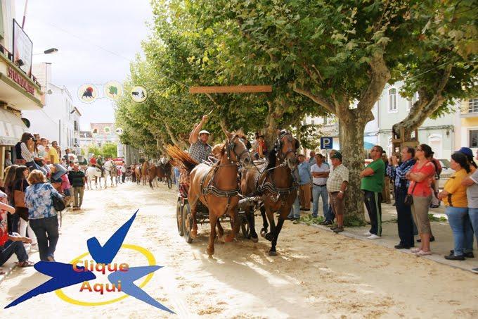 Festas da Moita 2016 - cavalhadas