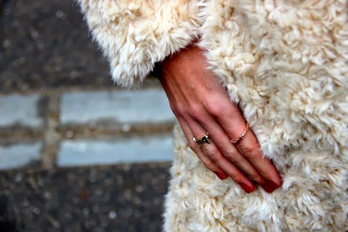 anillos dorados con abrigo pelo
