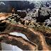 Hang Sơn Đoòng được báo Mỹ ví như thế giới khủng long