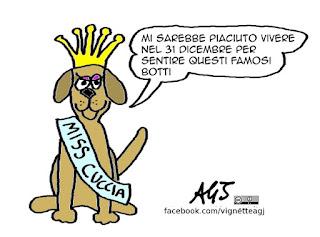 Miss Italia, botti di capodanno, animali, 2016, buon anno, vignetta satira