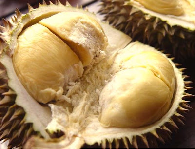 durian paling sedap di dunia