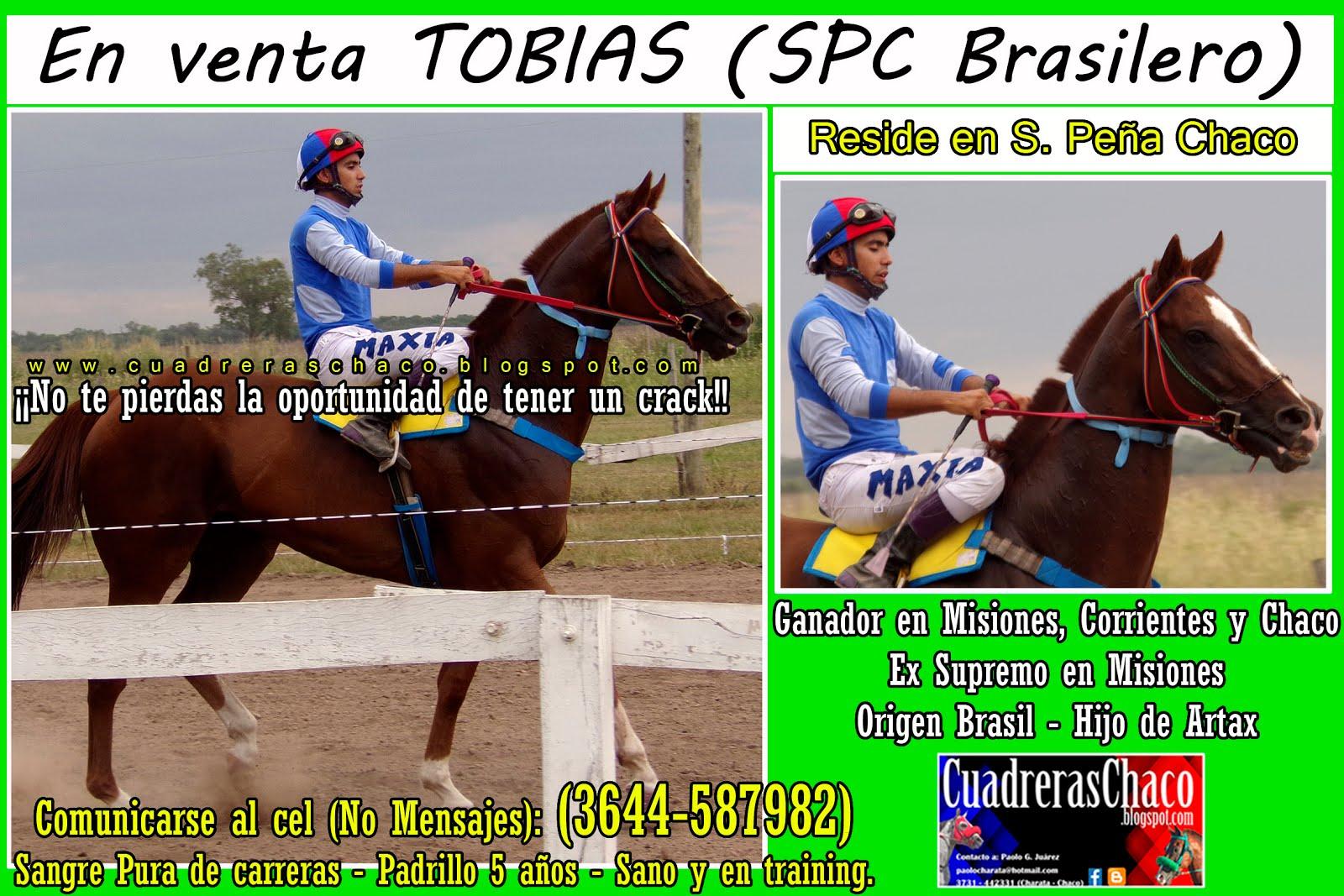 TOBIAS VENTA 28-12-15