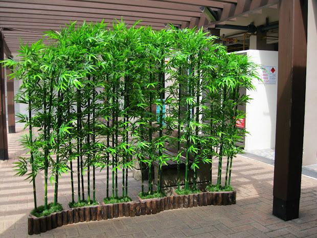hoi kee flower bamboo landscape